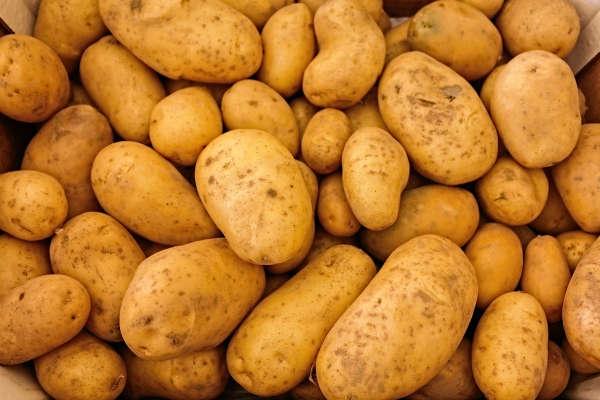 Kartoffeln helfen beim Kampfe gegen Cellulite
